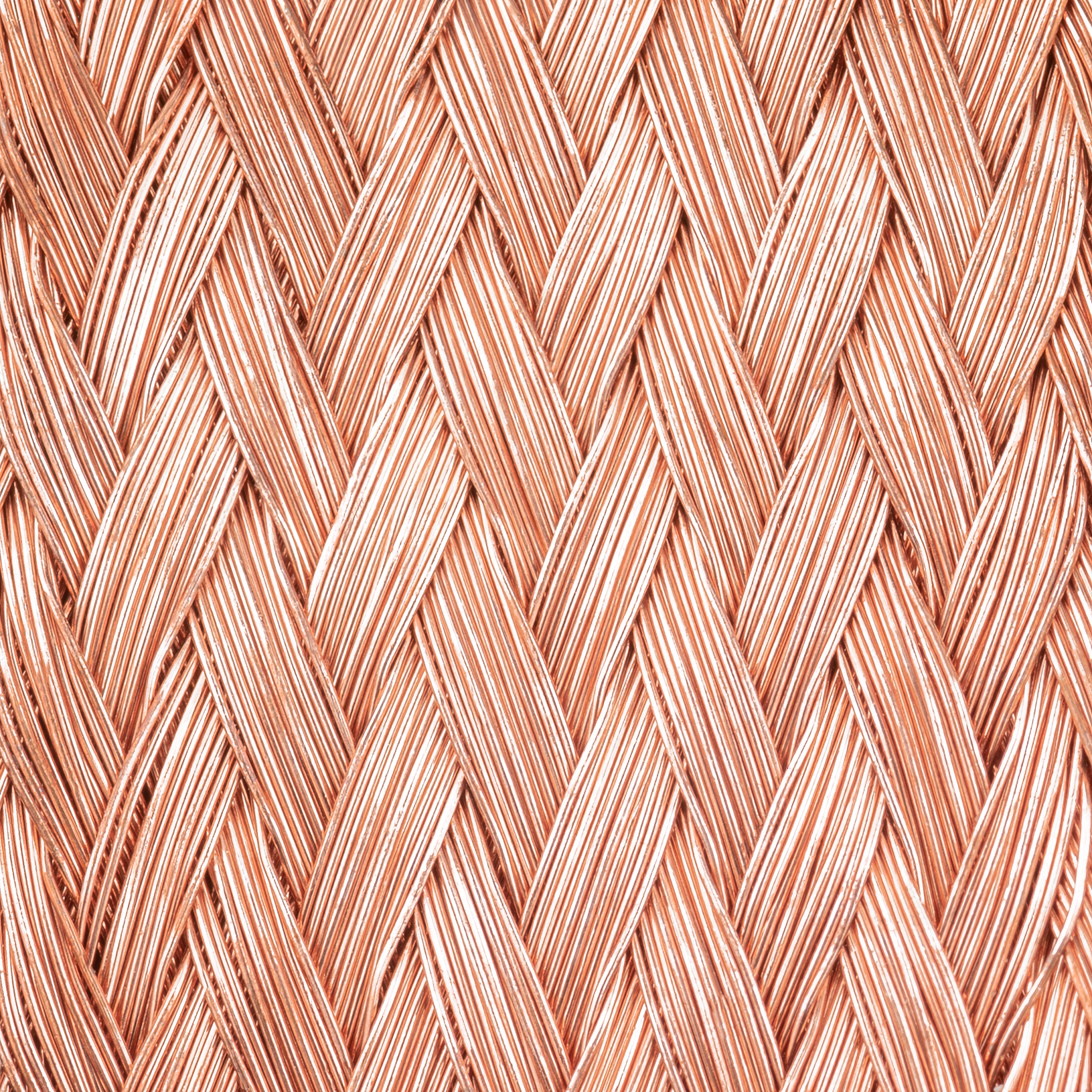 Copperbraid closeup